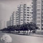 poze fotografii din vechiul Bucuresti - amintiri din comunism 149