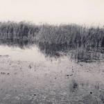 poze fotografii din vechiul Bucuresti - amintiri din comunism 165
