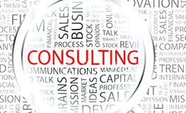 consultanta servicii oferite
